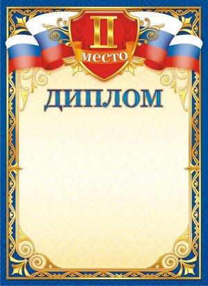 Диплом 2 место (картон)