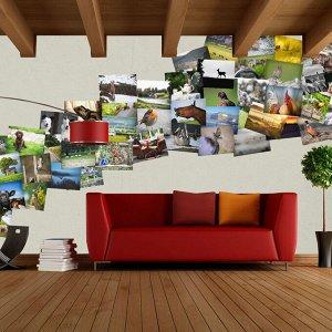 Фотообои Коллаж Загородные пейзажи