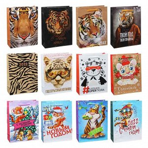 СНОУ БУМ Пакет подарочный, 24х18х7см, бумага, 12 дизайнов, арт.2022-9