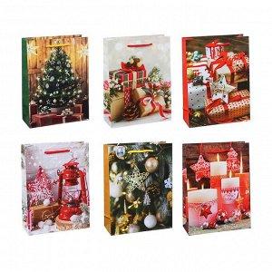 СНОУ БУМ Пакет подарочный, 24х18х7см, бумага, 6 дизайнов, арт.2022-10