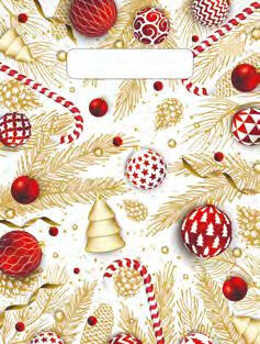 Пакет 19х25 Красные шарики 7620
