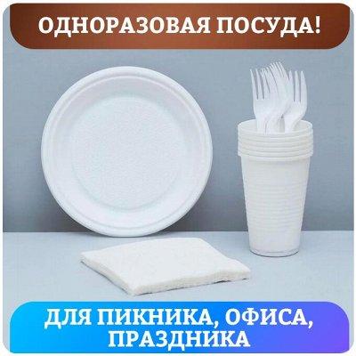 Быстро и выгодно! Полезные гаджеты для взрослых и детей — Одноразовая посуда! Для пикника, офиса, праздника