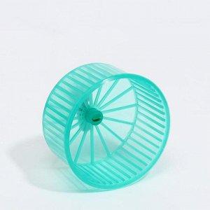 Колесо для грызунов полузакрытое пластиковое прозрачное, без подставки, 9 см, зелёное