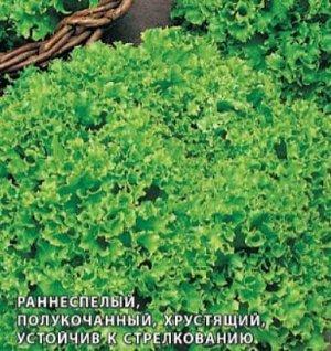 Лолло Бионда 0,5гр Плазма салат