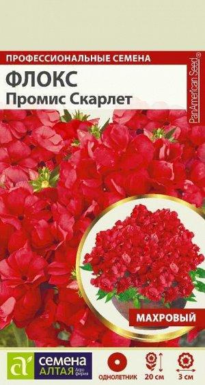 Флокс Промис Скарлет махровый/Сем Алт/цп 5 шт.