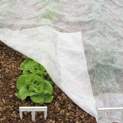 Распродажа посадочного на осень! Луковицы, семена, удобрения — Укрывной материал