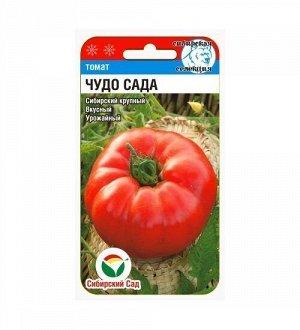 Чудо сада 20шт томат (Сиб сад)