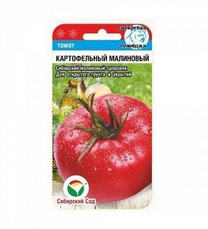 Картофельный малиновый 20шт томат (Сиб сад)