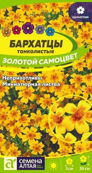 Бархатцы Золотой Самоцвет тонколистн./Сем Алт/цп 0,1 гр.