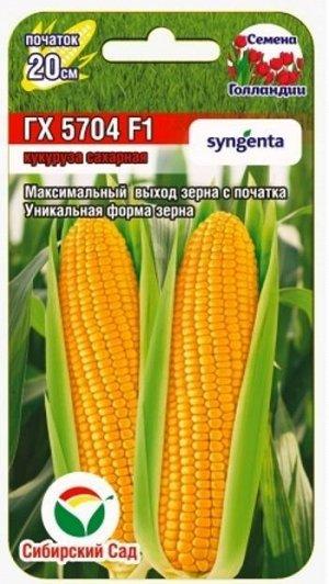 ГХ 5704 F1 6шт кукуруза (Сиб Сад)