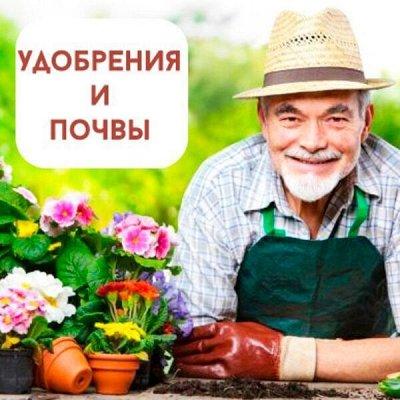 Цветоводство: для дома и дачи