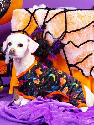 Комбинезон на хэллоуин с рисунком для домашних животных