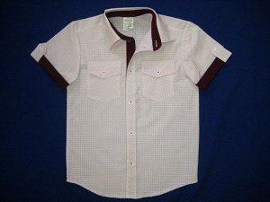 Сорочка короткий рукав Паты с карманами белая с бордо школьная ростовка