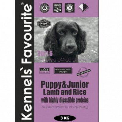 ✔ Корма для кошек и собак. + Витамины и био-добавки — KENNELS` FAVOURITE. Корм д/взрослых собак и щенков