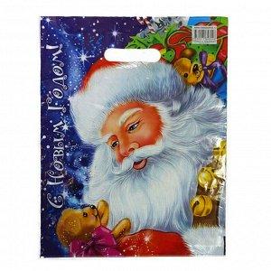 """Пакет вырубной типа """"Нивея"""" """"Дед Мороз и медвежонок"""" 32*40см (50шт)"""
