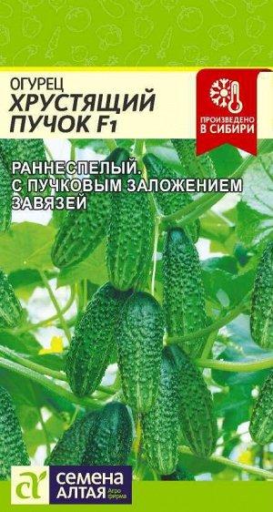 Огурец Хрустящий Пучок F1/Сем Алт/цп 6 шт.