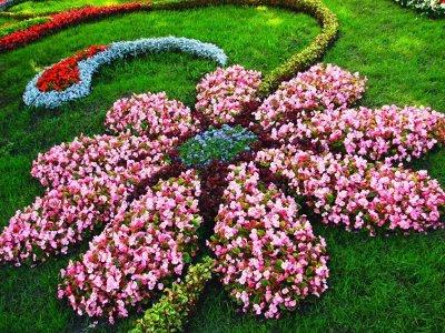 2000 видов семян для посадки! Подкормки, удобрения