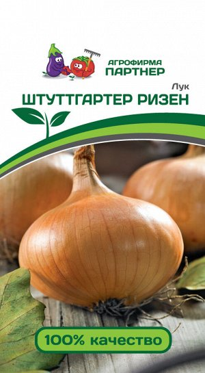 ПАРТНЕР Лук репчатый Штуттгартер Ризен / сорта