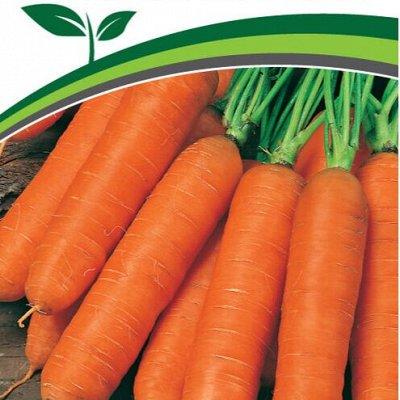 Семена Партнёр. Проверенные временем — Морковь, свекла