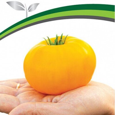 Семена Партнёр. Проверенные временем — Томаты для защищенного грунта