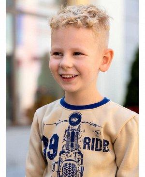 Бежевый джемпер для мальчика Цвет: бежевый