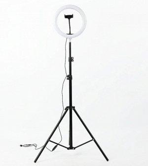 Кольцевая светодиодная лампа 26 см + держатель для телефона