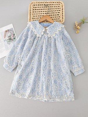 Кружевное платье с воротником питер пэн для девочек
