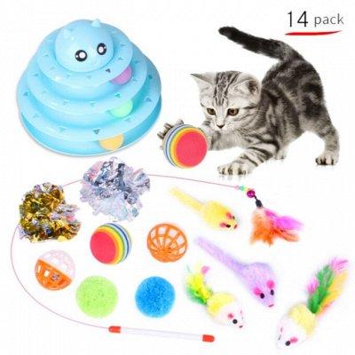 😺 Ушки, лапки, хвостики. Популярная закупка для любимцев — Наборы игрушек