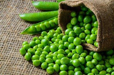 Базилик — любимая пряная зелень — Горох. Кукуруза. Фасоль