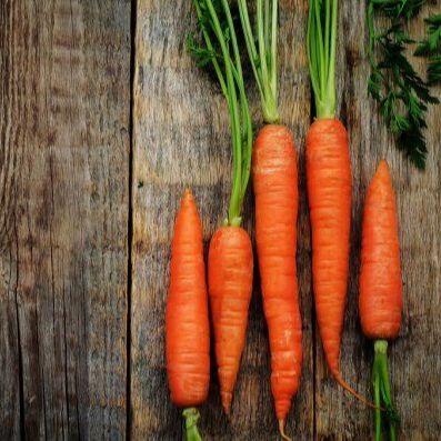Базилик — любимая пряная зелень — Морковь