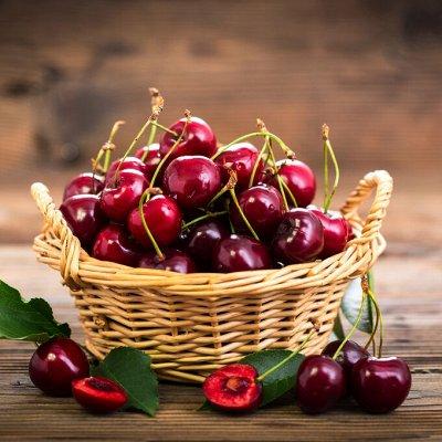 Саженцы плодово-ягодные и декорат! Огромный выбор. Весна 2022 — Вишня, черешня