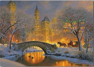 Алмазная живопись - мозаика Зимняя ночь в Центральном парке 50*65 см