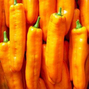 Перец сладкий Палермо оранжевый F1 3шт