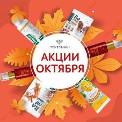 Натуральные масла из Таиланда для тела, массажа и волос — Осенняя распродажа! Экспресс очищение 90руб