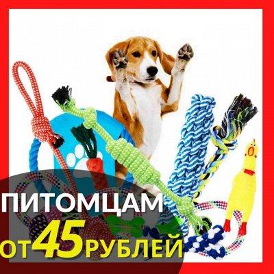 ✌ ОптоFFкa ️*Товары ежедневного спроса ️ — Товары для животных