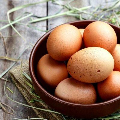 По-домашнему! Полуфабрикаты, яйца и фермерские сыры!