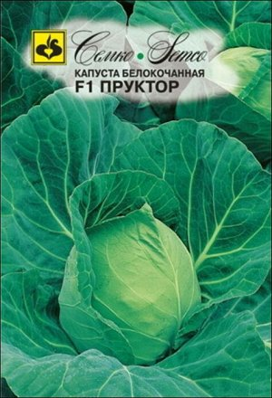 Семко Капуста б/к ПРУКТОР F1 ^(0,2г)