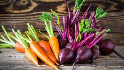 Самый лучший сад! Семена Сады России! Вкуснейшие томаты — Кабачки, Морковь, Свекла, Кукуруза