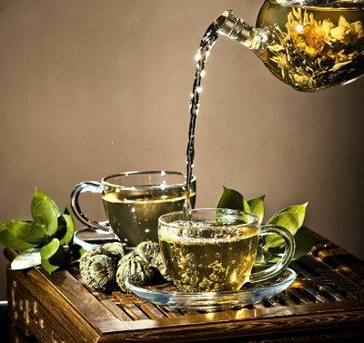 VINTAGный вкусный и натуральный чай — Травяные сборы
