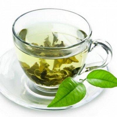 VINTAGный вкусный и натуральный чай — Зеленый чай