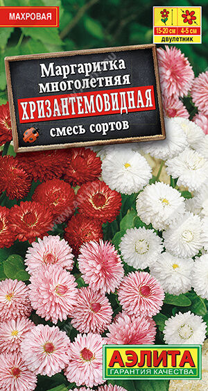 Маргаритка Хризантемовидная, смесь сортов