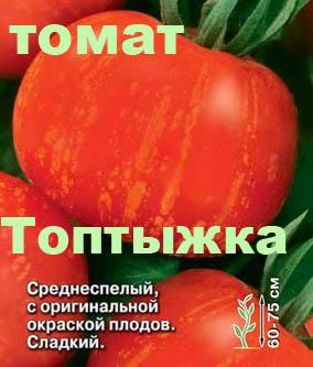 томаты сорта фото топтыжка