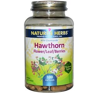 Nature's Herbs, Боярышник, Цветок/Лист/Ягоды, 100 кап.