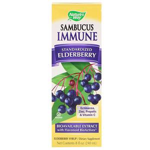 Nature's Way, Sambucus Immune, сироп из бузины (240 мл)