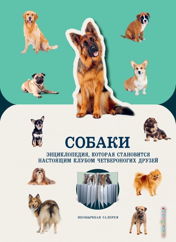 Конн А. Собаки