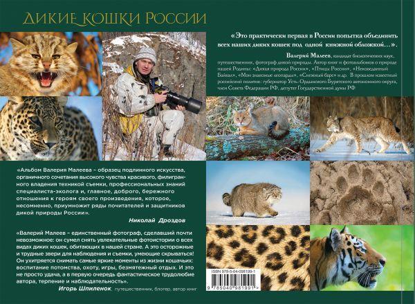 Малеев В.Г. Дикие кошки России: иллюстрированный авторский фотоальбом
