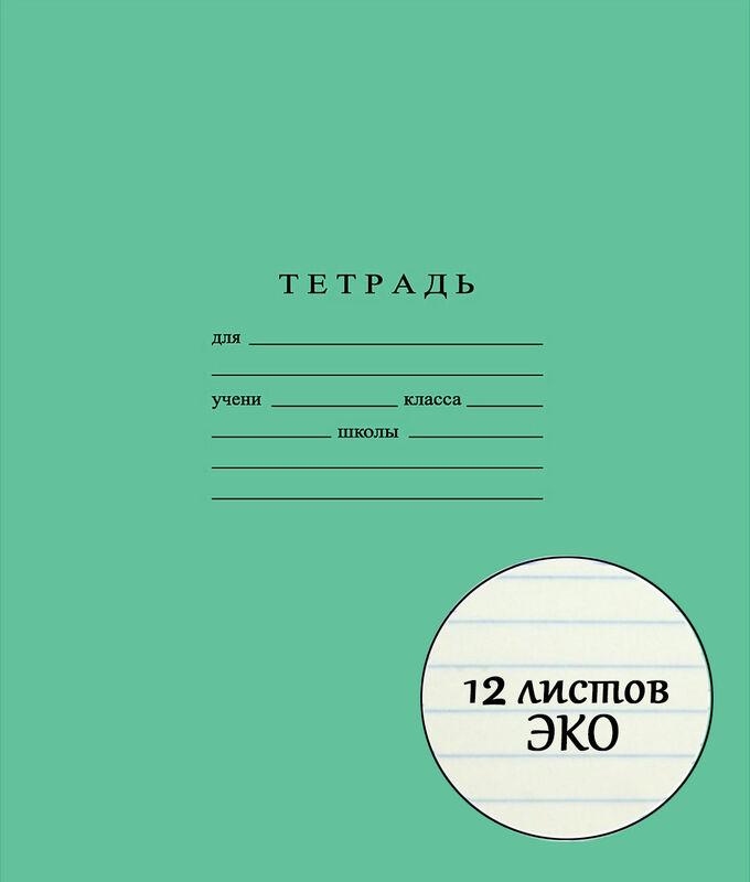 Школьная тетрадь ЭКО 12 листов ЛИНИЯ