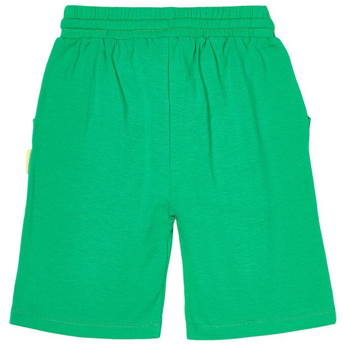 Шорты для мальчика, зелёный
