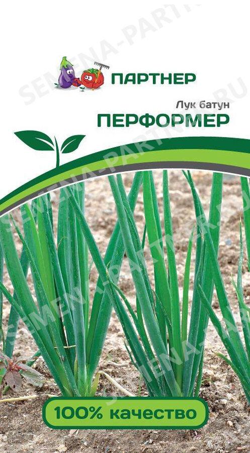 Семена Лук батун Перформер 1 гр.