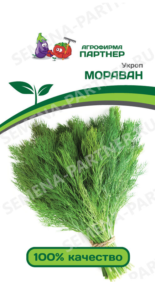 Семена Укроп Мораван ^(2Г)